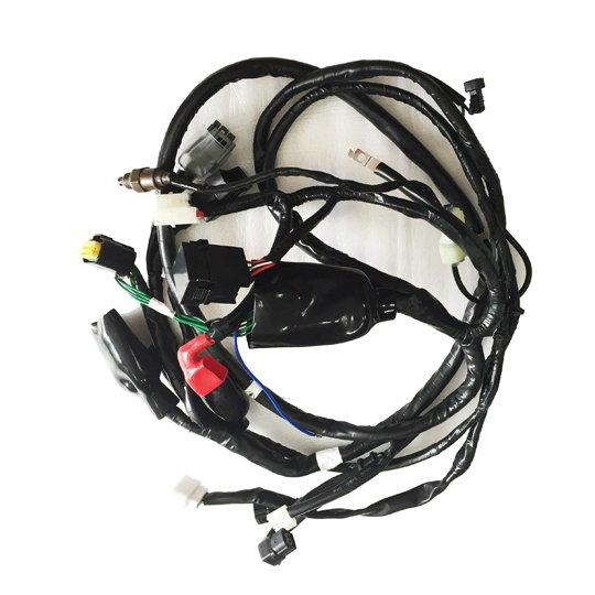 Spacy100cc Motorcycle Wire Harness